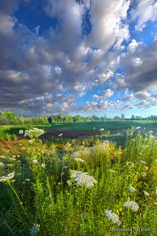 Wisconsin Horizons by Phil Koch, turning landscapes in to na... via Phil Koch