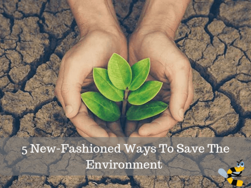 5 New-Fashioned Ways To Save The Environment - Curious Keeda