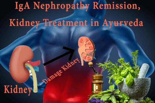 IgA Nephropathy Remission Ayurvedic Treatment