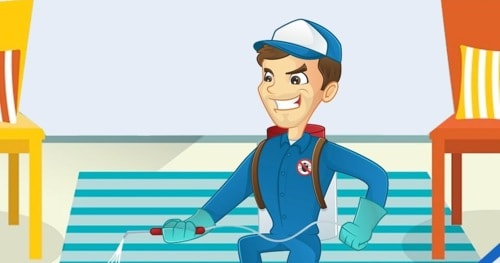 Why your home needs Smile Handyy pest control service immediately?
