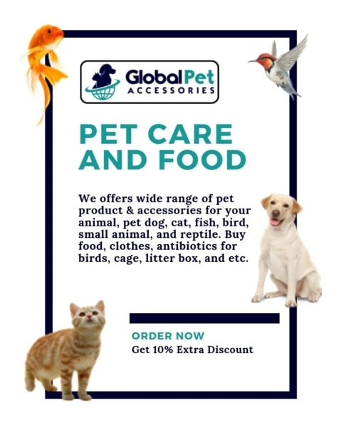 At the Global Pet Accessories, you are sure to find plenty o... via globalpetaccessories