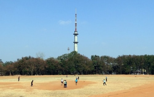 Fantasy Cricket Apps List - A Comprehensive List of 20 Apps - TechnoMusk