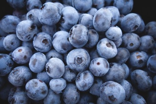 Share4all » Food » Eat Blueberries daily to enhance your memory