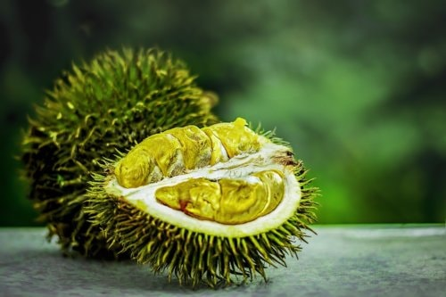 Share4all » Health » Top 12 Health Benefits of Durian Fruit