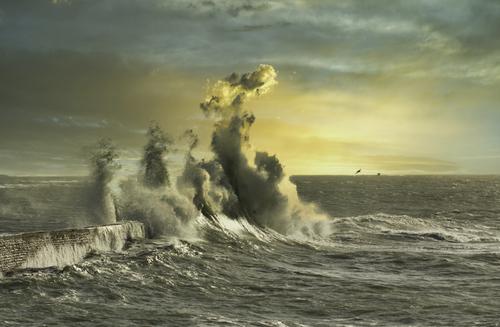 Waves via Jean Michel
