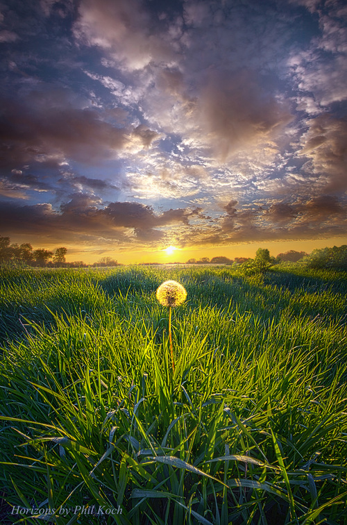 Faith via Phil Koch