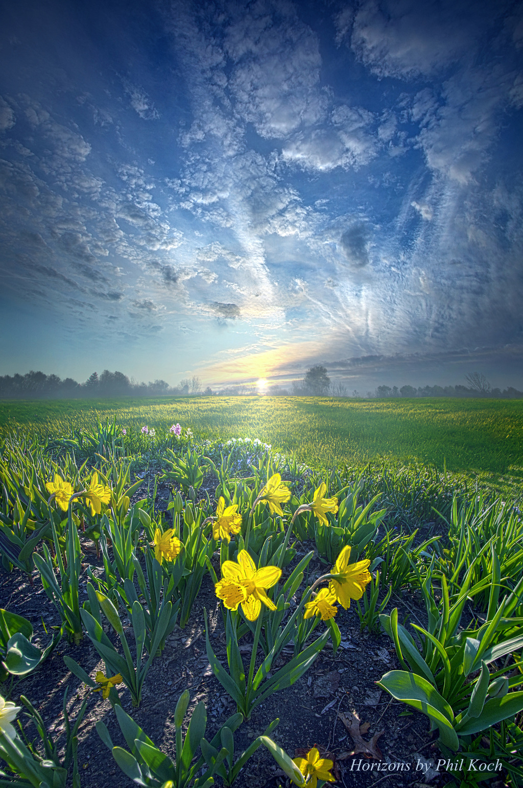 """""""All I Have To Do Is Dream""""                                         Horizons by Phil Koch, turning l... via Phil Koch"""