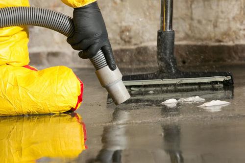 Mould Removal Brisbane | Mould Cleaning via Moisturecontrol