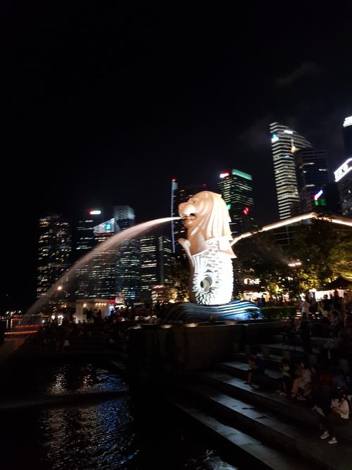 Singapore by night via Elzbieta D. Jaworska