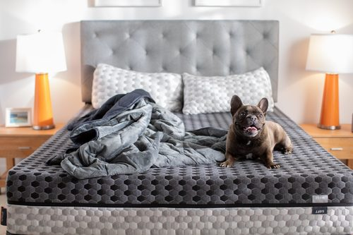 What is Sleep Hygiene? 6 Tips for Good Sleep | Layla Sleep