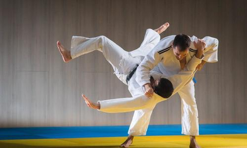 Learn MMA Martial Arts by booking classes/lessons in Dubai.                                     ... via pursueit