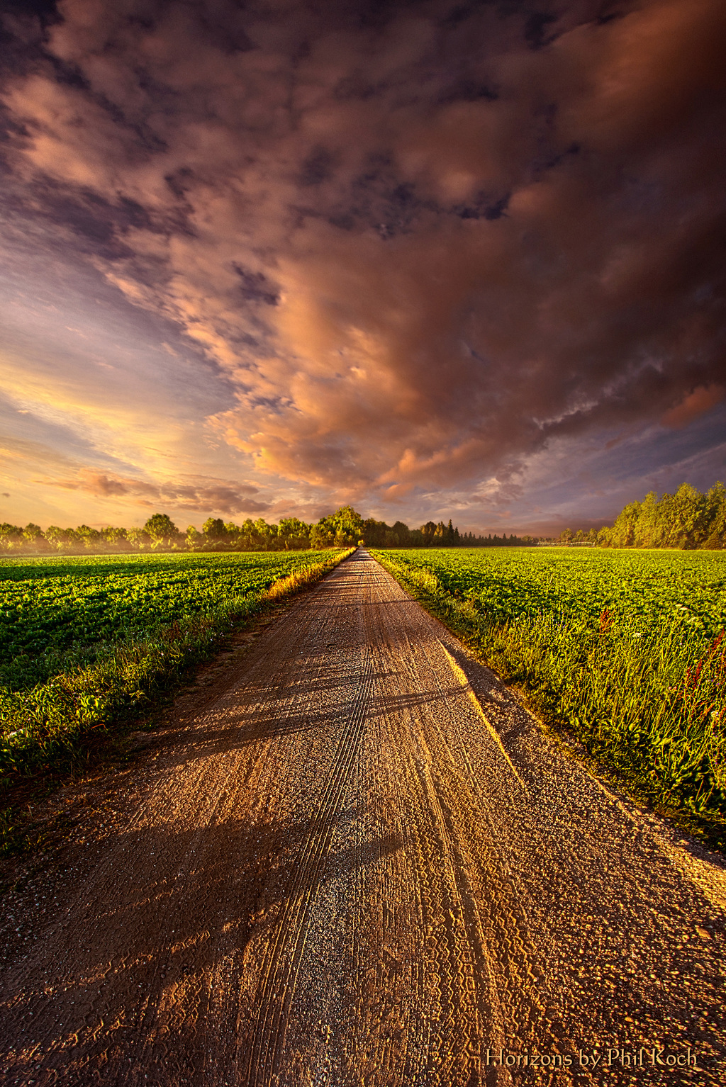 Wisconsin Horizons,Turning landscapes into portraits of natu... via Phil Koch