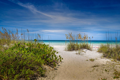 Florida West Coast Afternoons... via Stacy White