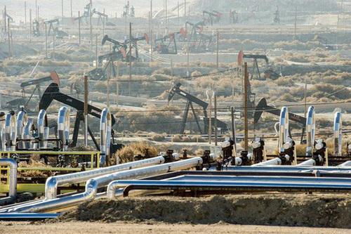 Giá xăng dầu hôm nay 19/8: Dầu giảm trở lại do nhu cầu tiêu thụ giảm