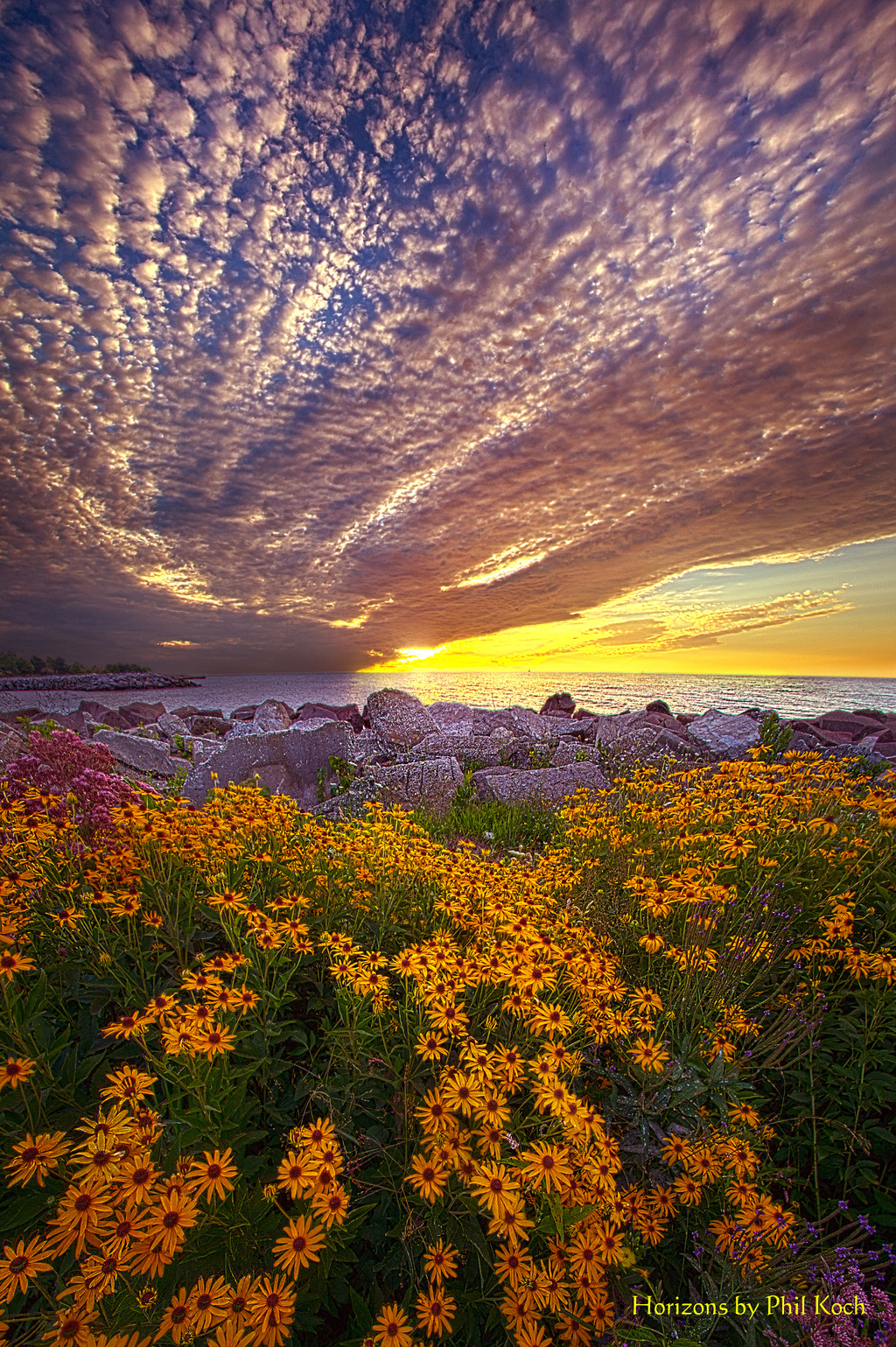 """""""The Simplest Things""""                                         Sunrise on the shore of Lake Michigan ... via Phil Koch"""
