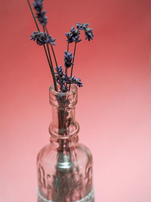 Custom Fragrance Manufacturers | Agilex Fragrances via Agilex Fragrances