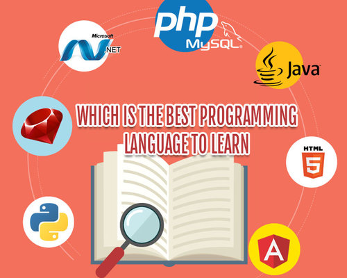 Which Is The Best Programming Language To Learn For Web Development Services?