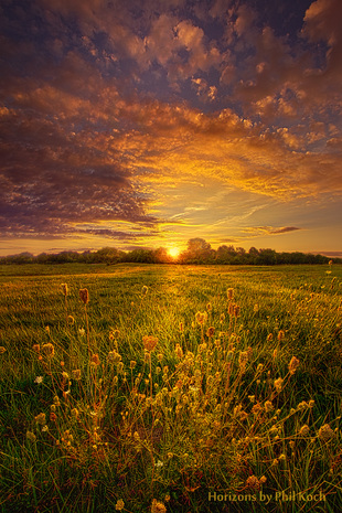 Rendition via Phil Koch