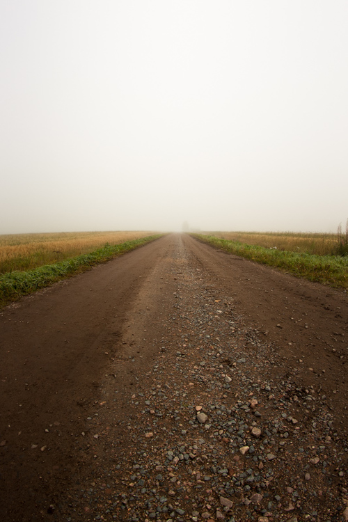 A gravel road leads to the mist over the fields at the rural... via Jukka Heinovirta