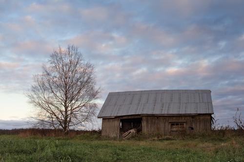 The autumn sunset colors the old barn house beautifully. The... via Jukka Heinovirta