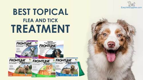 Frontline Plus Is The Best Topical Treatment For Kill Fleas/... via Easyvetsupplies