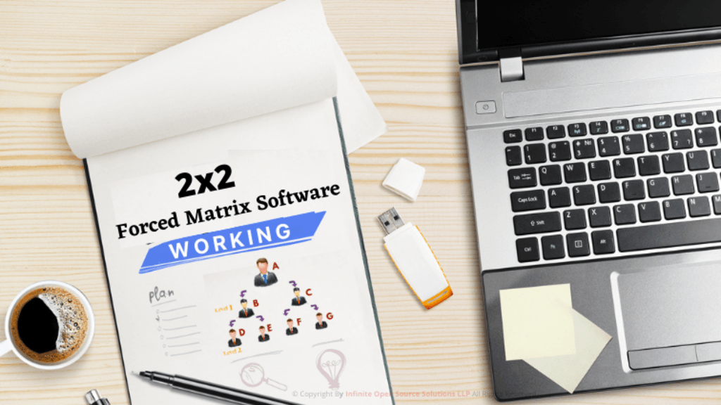 2x2 Forced Matrix Software Working via Infinite MLM Software