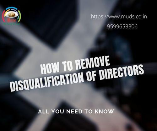 Disqualification of Directors via Ritwik Mehta