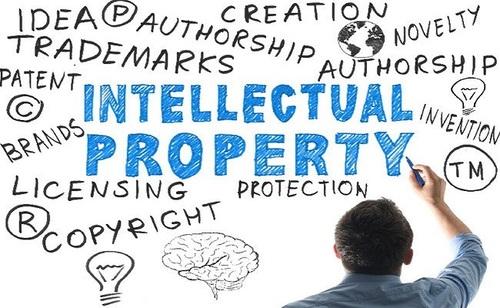 印度的知识产权律师事务所 via Eva taylor