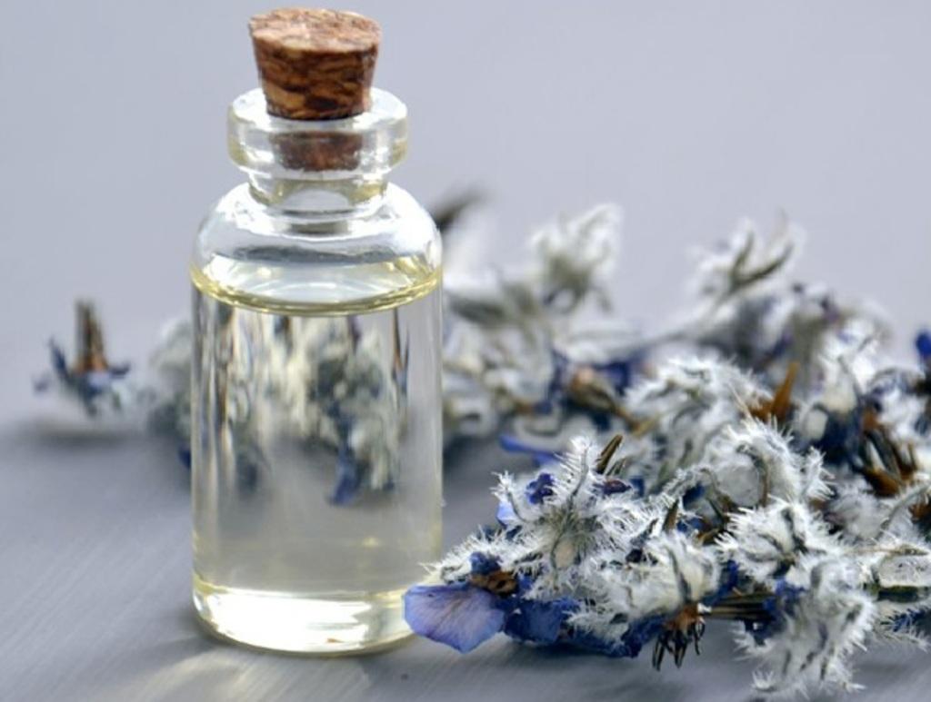 Fragrance notes – A blend of Science and Creativity via Agilex Fragrances
