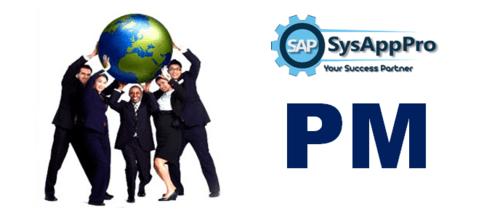 SAP PM Training in Noida :: SysAppPro Noida