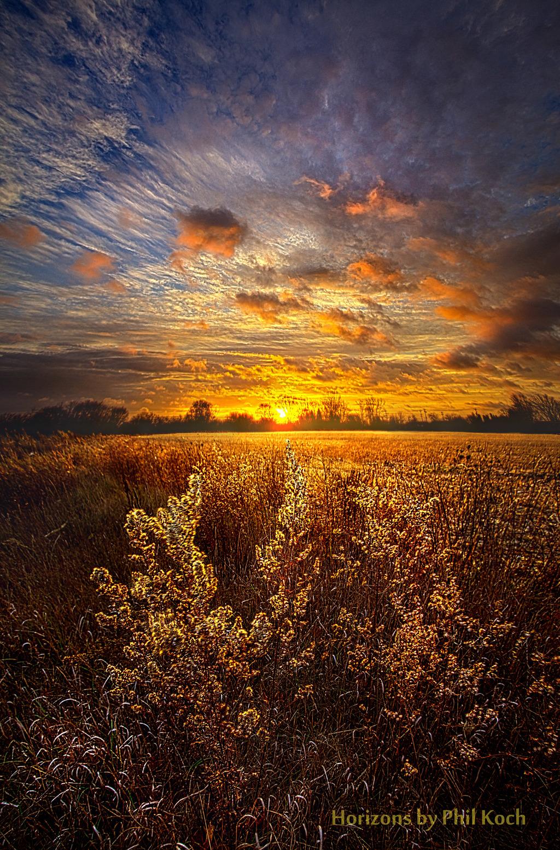 Wisconsin Horizons by Phil Koch.                                         Turning natural landscapes ... via Phil Koch