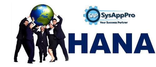 SAP HANA Training in Noida