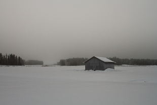 Early winter morning on the snowy fields at the Northern Fin... via Jukka Heinovirta