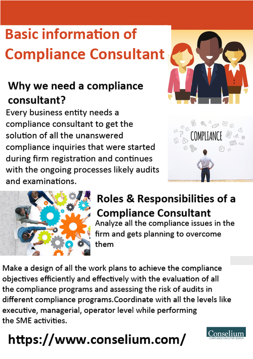 Basic information of Compliance Consultant                                     Hiring a Chief Co... via Conselium Compliance Search