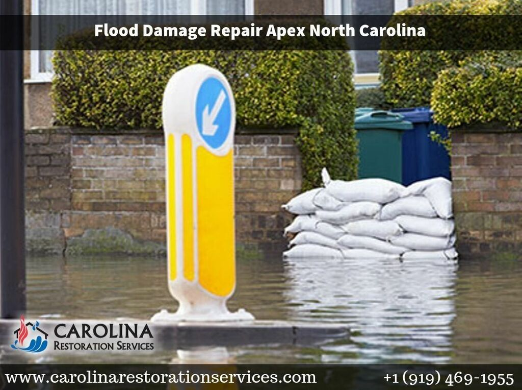 When you experience damage to your home or commercial proper... via Carolina Restoration Services