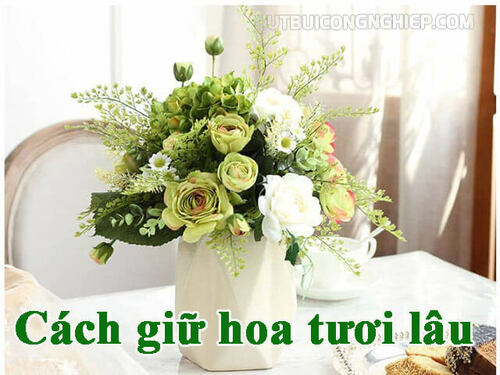 【Bật mí】Cách giữ hoa tươi lâu khi cắm hiệu quả nhất của chủ shop