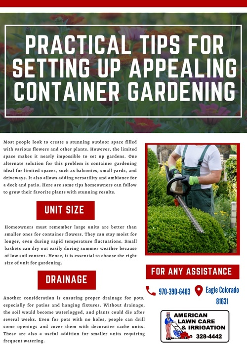 Container Gardening For Beautiful Landscapes