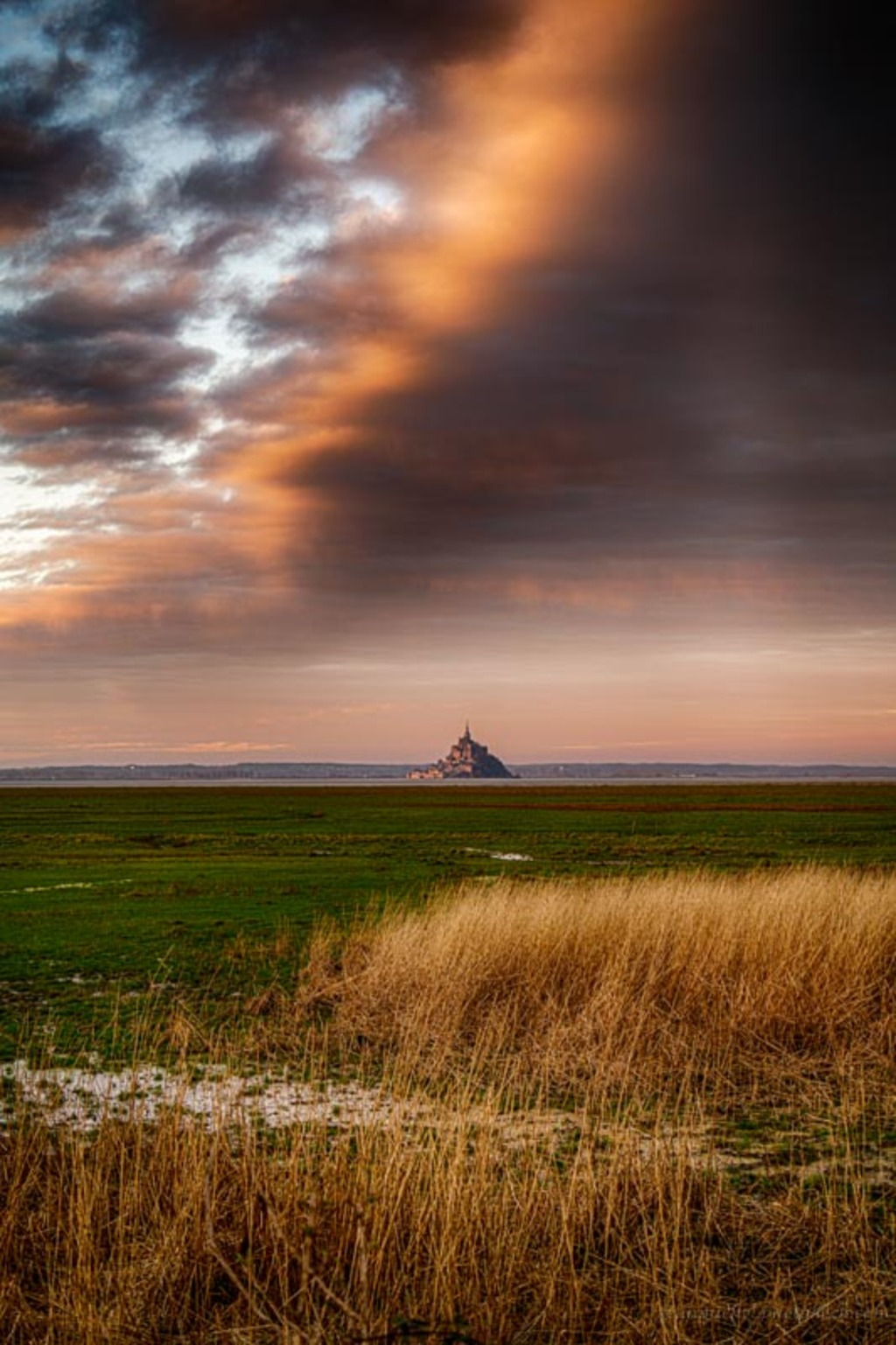 Sunrise in the Bay via Jean Michel