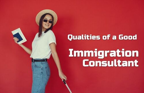 Qualities of a Good Immigration Consultant • ModernLifeBlogs