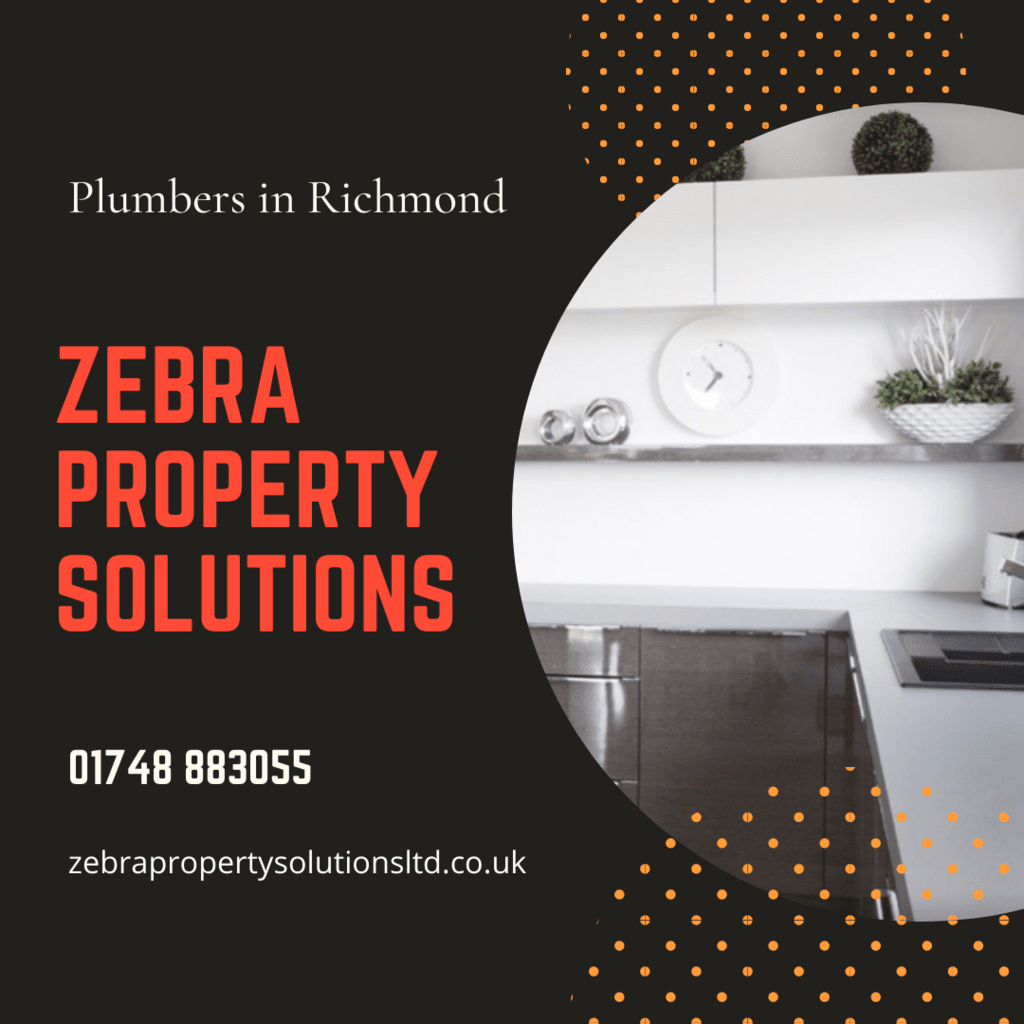 Zebra Property Solutions is located in Richmond. We have bee... via Zebra Property Solutions Ltd