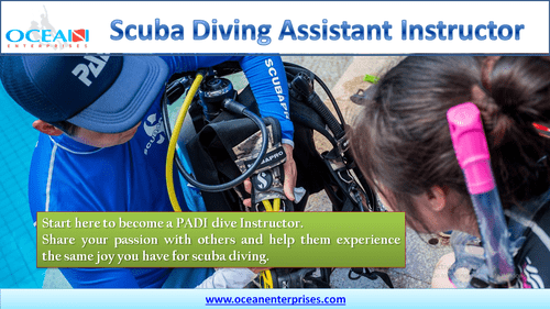 PADI Assistant Instructor Course - Ocean Enterprises via Ocean Enterprises