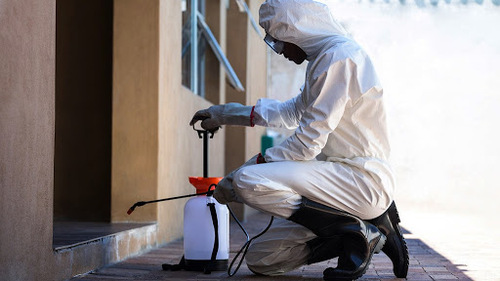 2021 How Much Does it Cost for Pest Control Services | HIREtrades