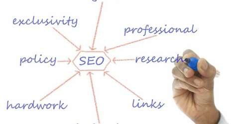 Provide Professional SEO Services From a Leading Company