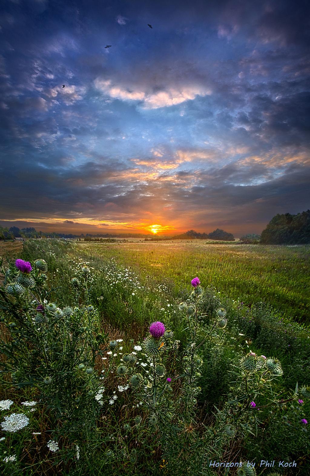 Wisconsin Horizons by Phil Koch                                         Turning natural landscapes i... via Phil Koch