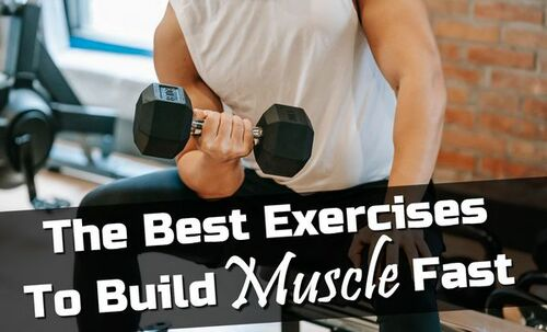 The Best Exercises To Build Muscle Fast • ModernLifeBlogs