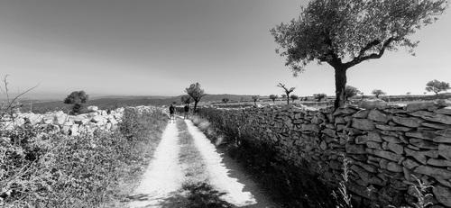 Stone walls via Gil Reis