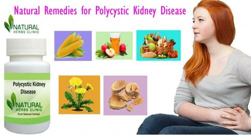 5 Natural Remedies for Polycystic Kidney Disease via Natural Herbs Clinic