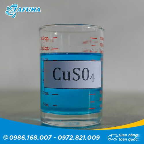 Hóa chất bể bơi đồng nước CuSO4 | Tafuma Việt Nam