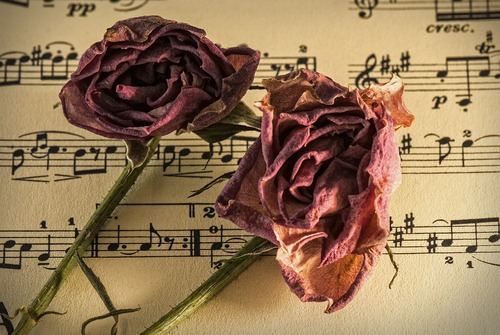 Nine of the most romantic pieces of classical music - Interl... via Interlude HK Ltd