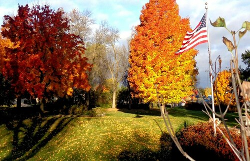 Old Glory In the Fall